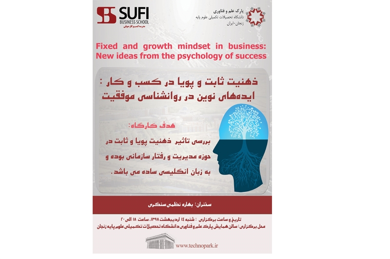Fixed and growth mindset in business: New ideas from the psychology of success